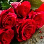Joyeuse Sans Valentin